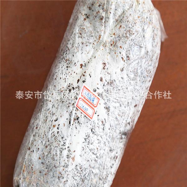食用菌菌种/2.jpg